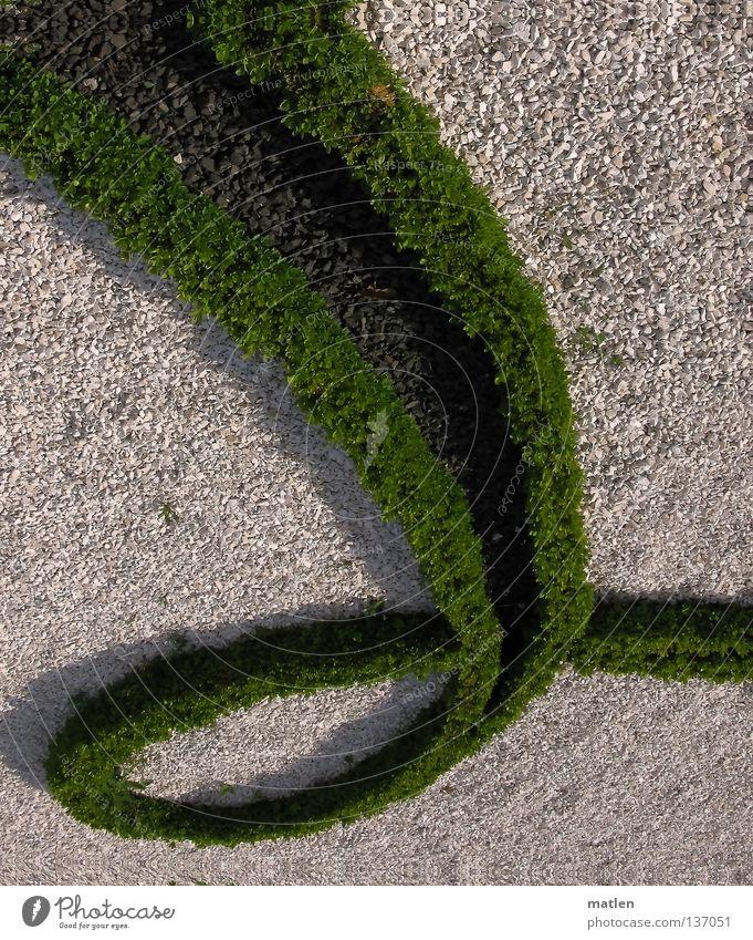 border swing Gravel Green White Gray Detail bux Garden Castle yard Baroque