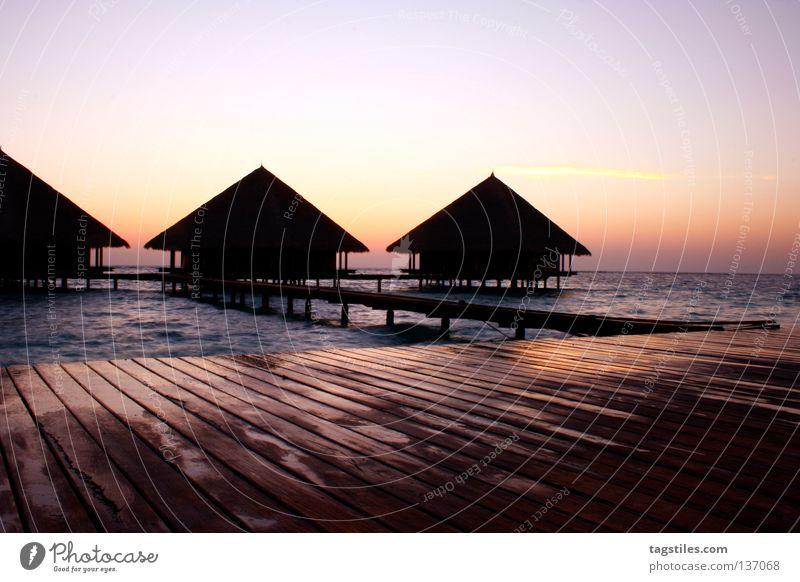 Sun Ocean Summer Vacation & Travel Life Relaxation Asia Good Living or residing Footbridge India Maldives Honeymoon Vacation home