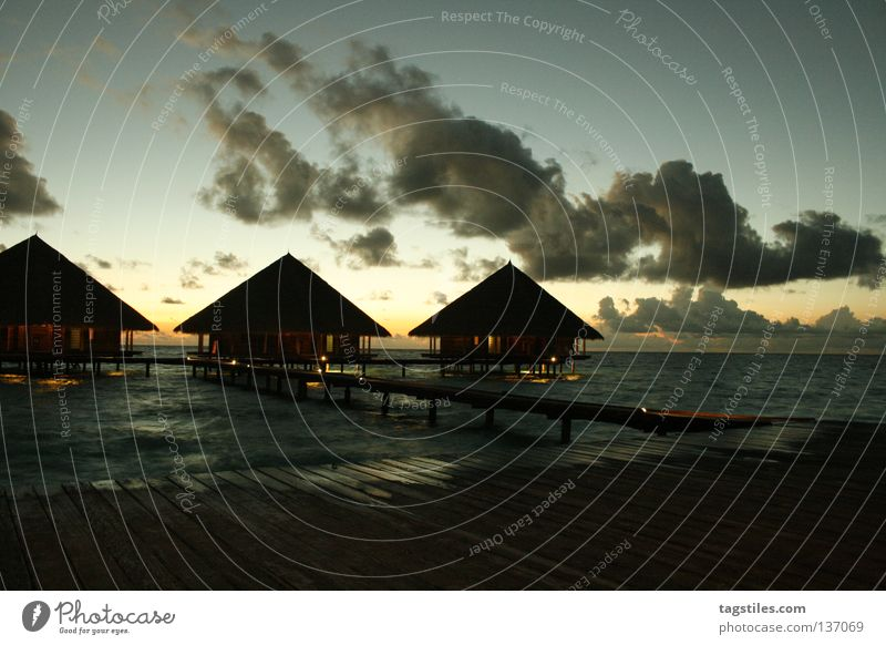 Sun Ocean Summer Vacation & Travel Life Relaxation Evening Asia Good Living or residing Footbridge India Dusk Maldives Honeymoon Vacation home