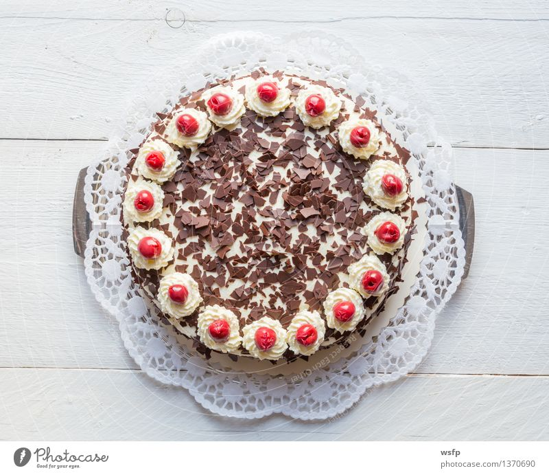 Black Forest cherry cake on white wood Cake Dessert Wood White Black forest gateau Gateau Cream gateau Cherry foam pastries cake top Baked goods sponge cake