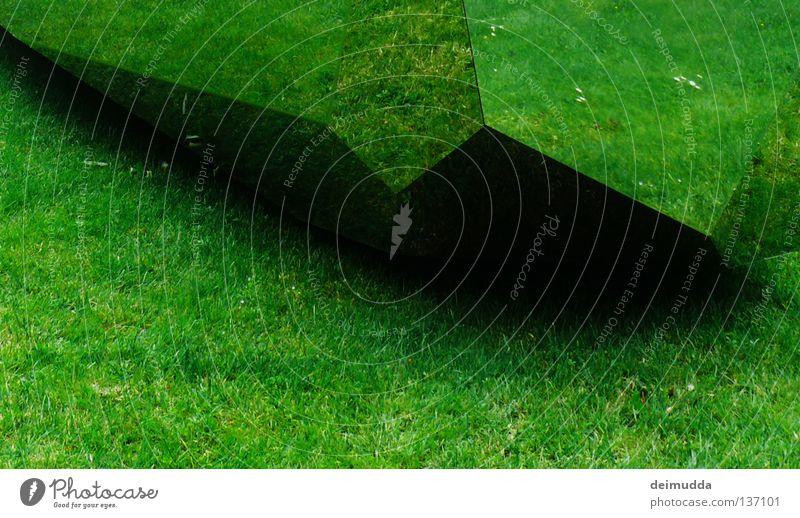 Nature Beautiful Flower Green Summer Black Dark Meadow Corner Mirror Point Surrealism Sharp-edged