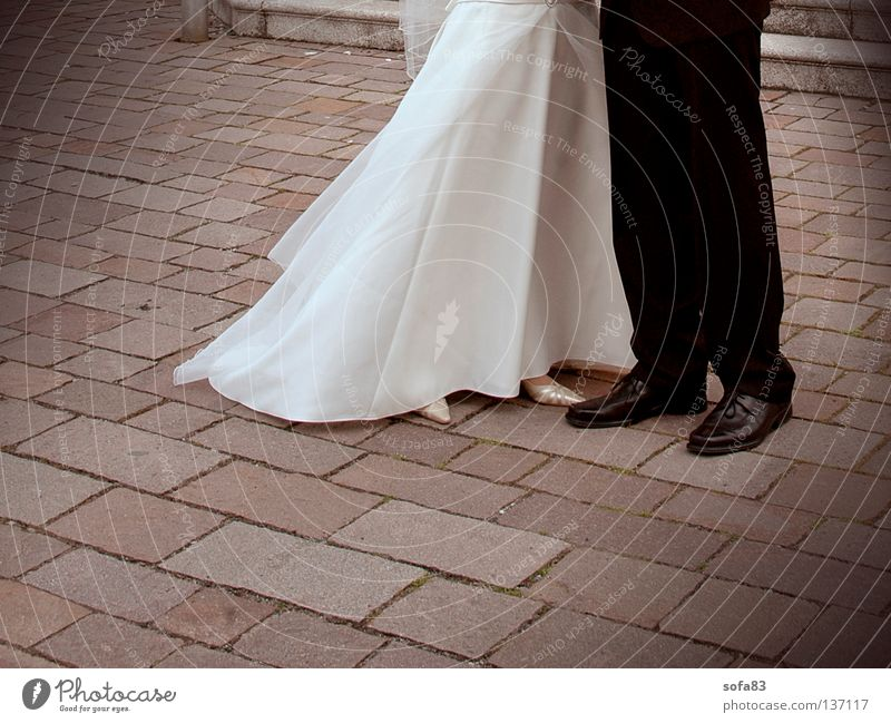 dream couple Wedding Bride Bride groom Wedding couple Lovers Completed Pants Together Couple pair Religion and faith ecclesiastical Legs dressed in pink Stone