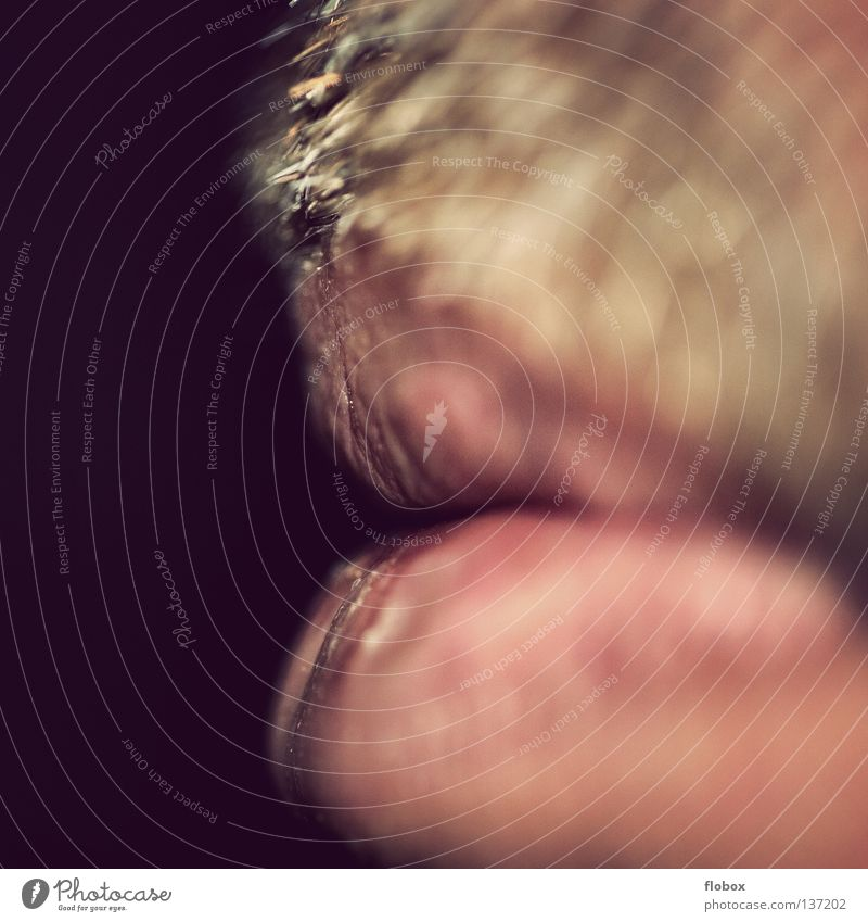 Body Parts I Reloaded Facial hair Moustache Upper lip Lower lip Lips Beard hair Rough Organ Blur Enlarged Close-up Unshaven Masculine Man Thorny Mouth