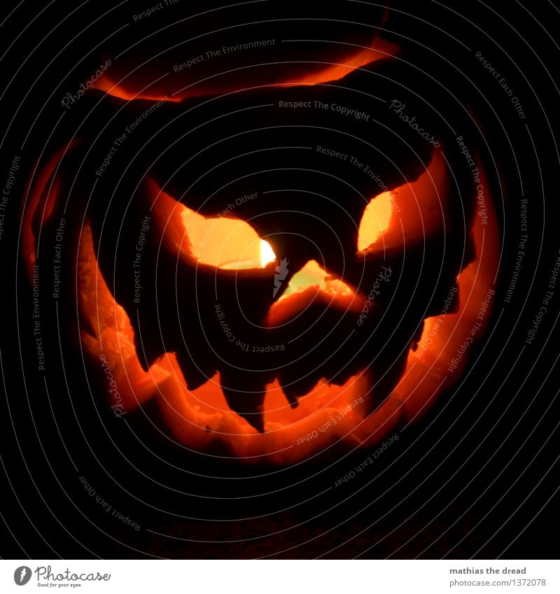 Halloween Night life Threat Dark Creepy Uniqueness Trashy Pumpkin Hallowe'en Face Spook Ritual Graven Teeth Lighting Candlelight Lantern Colour photo Deserted