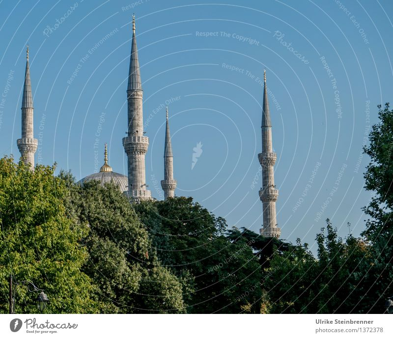 Minarets 1 Vacation & Travel Tourism Sightseeing City trip Istanbul Turkey Downtown Manmade structures Building Architecture Mosque Tower Tourist Attraction