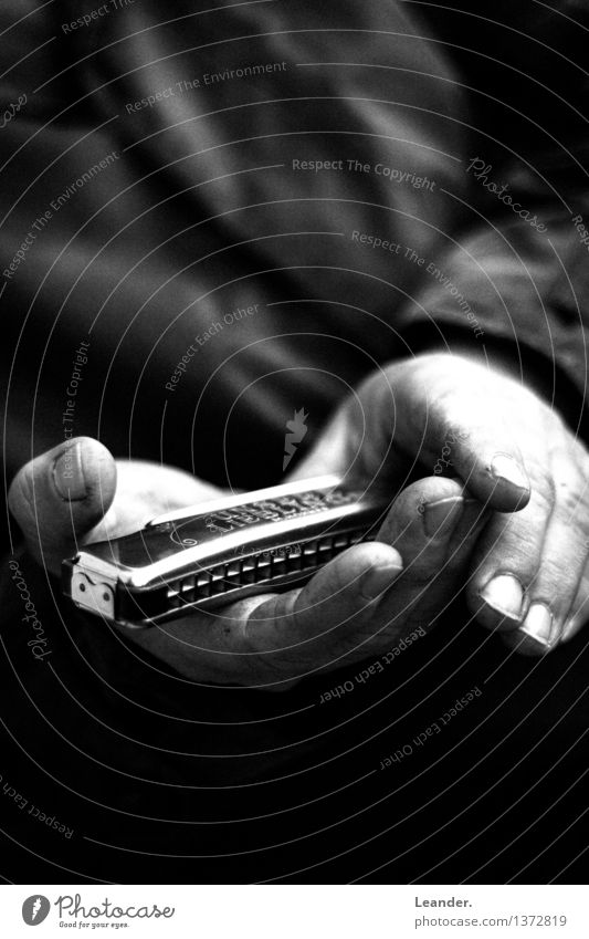 Harmonica in hand II Music To hold on Listen to music Moody Caution Interest Lovesickness Success Idea Identity Uniqueness Innovative Inspiration Shame