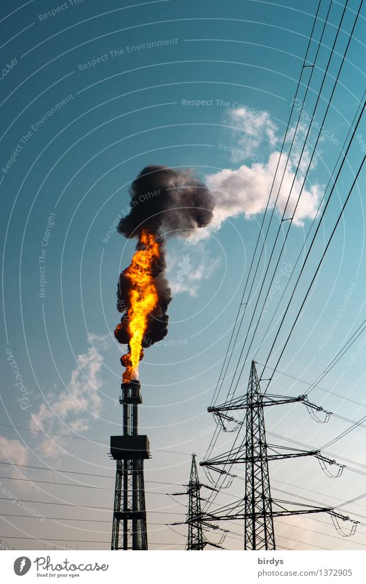 and it burns burns burns... Industry Technology Energy industry Sky Beautiful weather Blaze Fire Electricity pylon Torch Threat Dirty Hot Blue Orange Black