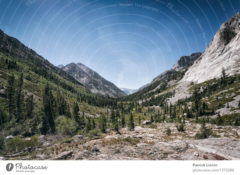 Kings Canyon National Park Well-being Contentment Senses Vacation & Travel Trip Adventure Far-off places Freedom Expedition Camping Summer Mountain Hiking