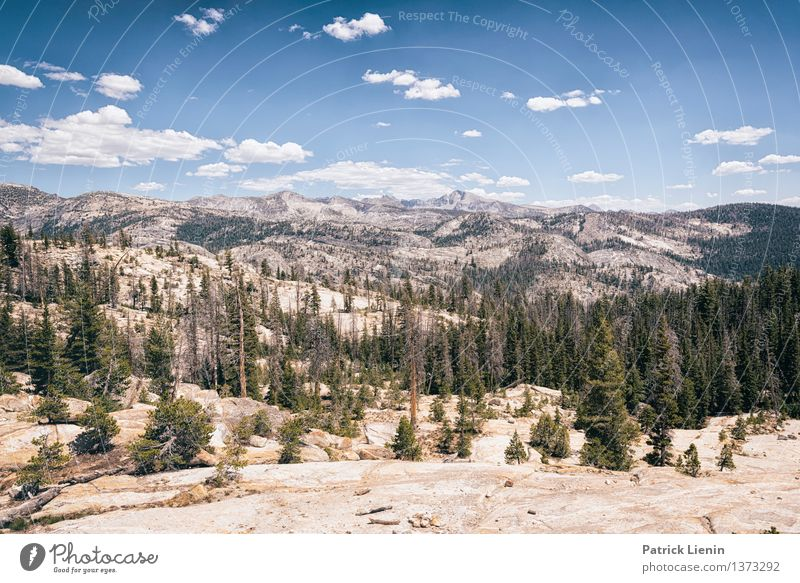 Sierra Nevada Wellness Life Harmonious Well-being Contentment Vacation & Travel Tourism Trip Adventure Far-off places Freedom Expedition Mountain Hiking