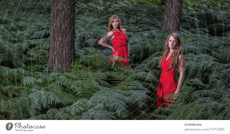 Human being Nature Youth (Young adults) Green Summer Young woman Tree Red 18 - 30 years Forest Adults Feminine Hair and hairstyles Fashion Illuminate Elegant