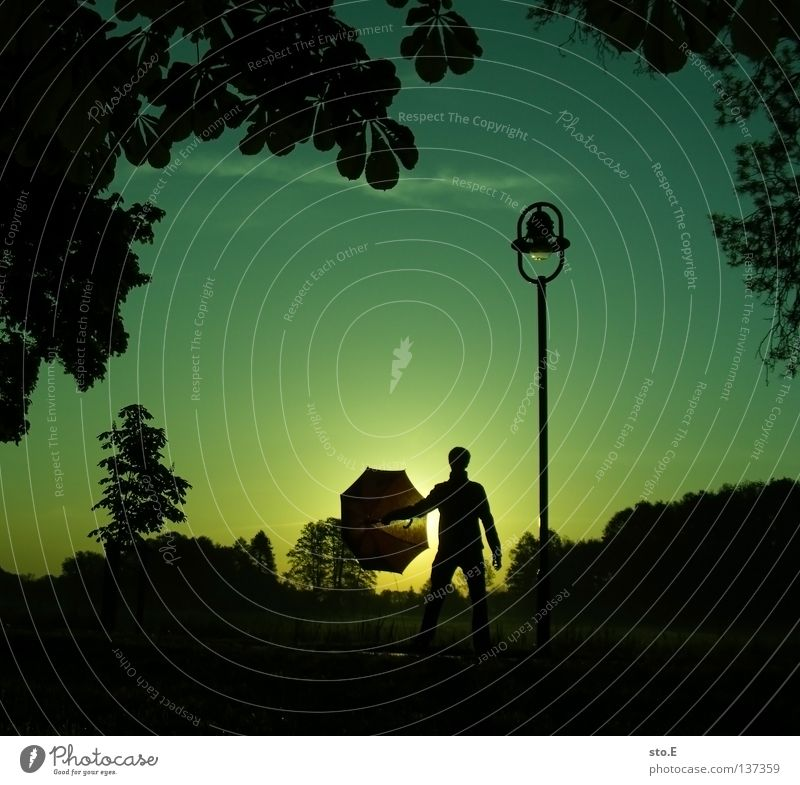 Human being Man Nature Youth (Young adults) Sky Tree Sun Green Calm Leaf Black Clouds Far-off places Colour Lamp Meadow