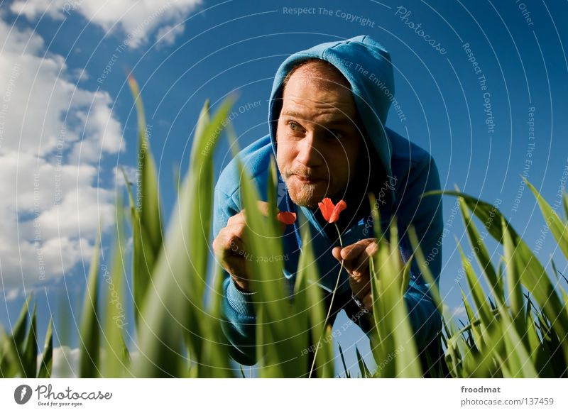 Sky Nature Man Youth (Young adults) Blue Green Summer Plant Red Flower Face Meadow Death Warmth Grass Spring