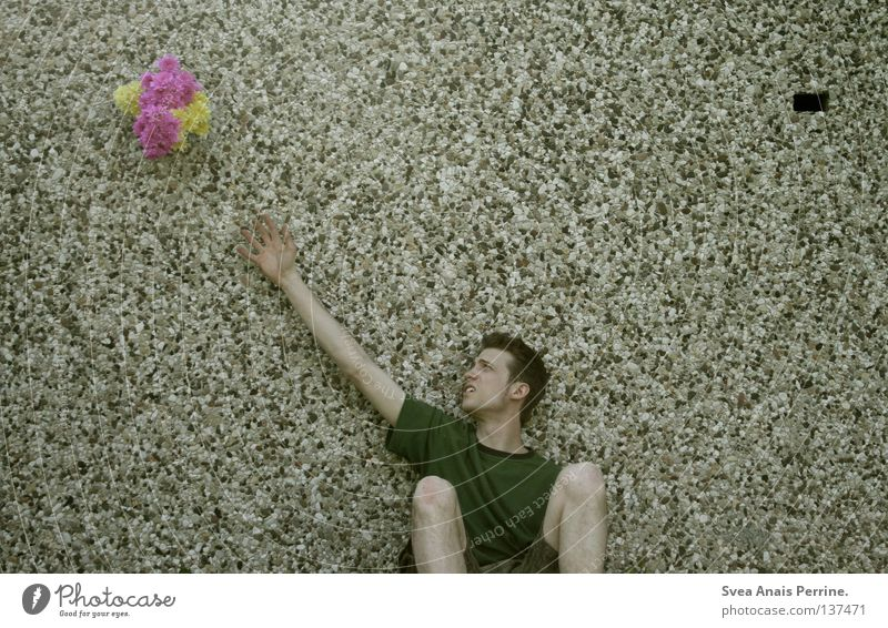 Man Youth (Young adults) Beautiful Flower Yellow Pink Sit Wait Masculine Gift Romance Transience Attempt Lovesickness Feeble Reach