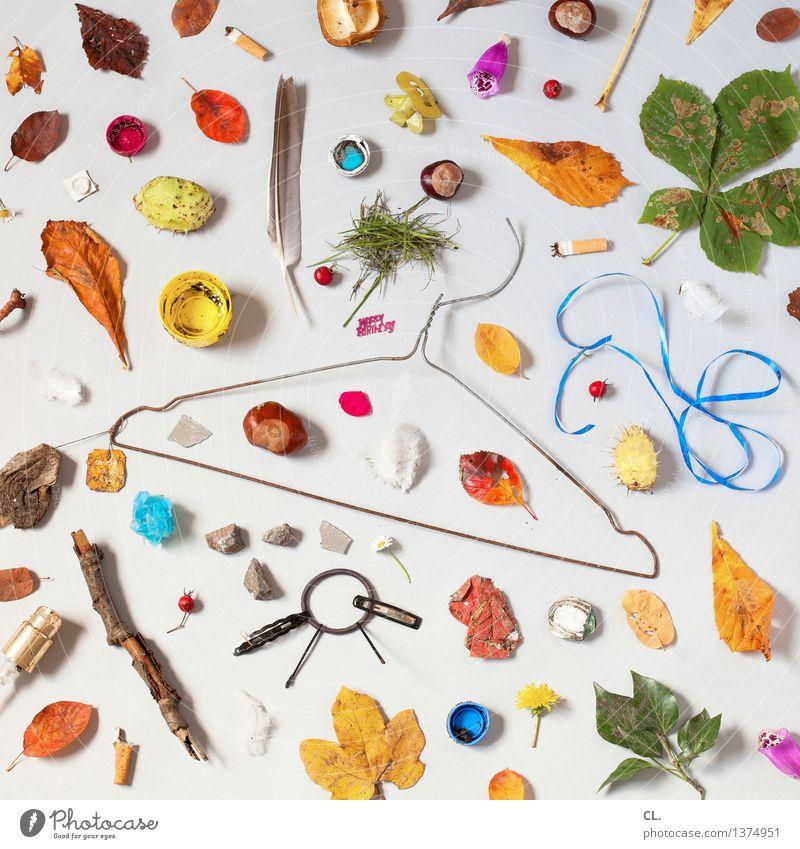 Leaf Blossom Trash Cigarette Hanger Gift wrapping Super Still Life