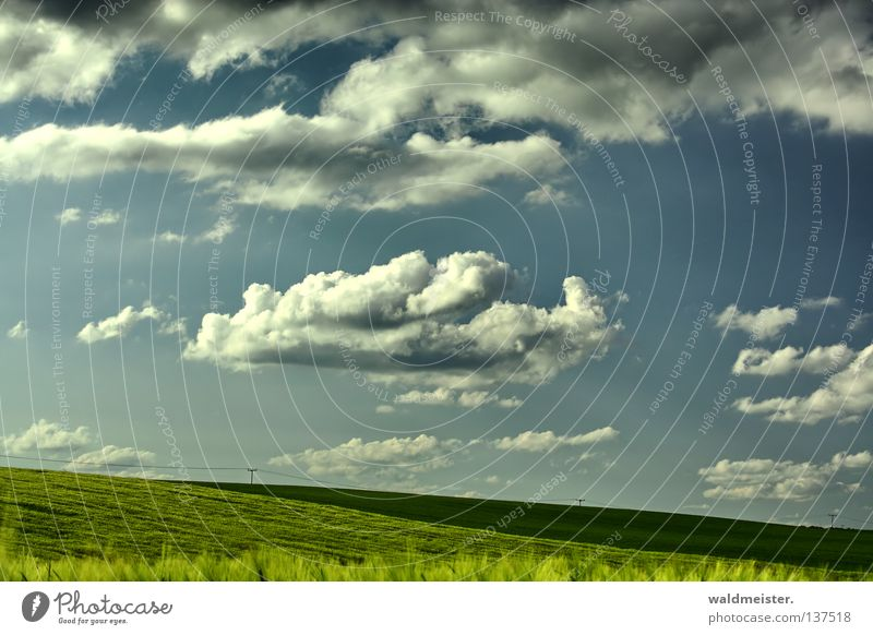 Nature Sky Summer Clouds Far-off places Meadow Landscape Field Agriculture Mecklenburg-Western Pomerania