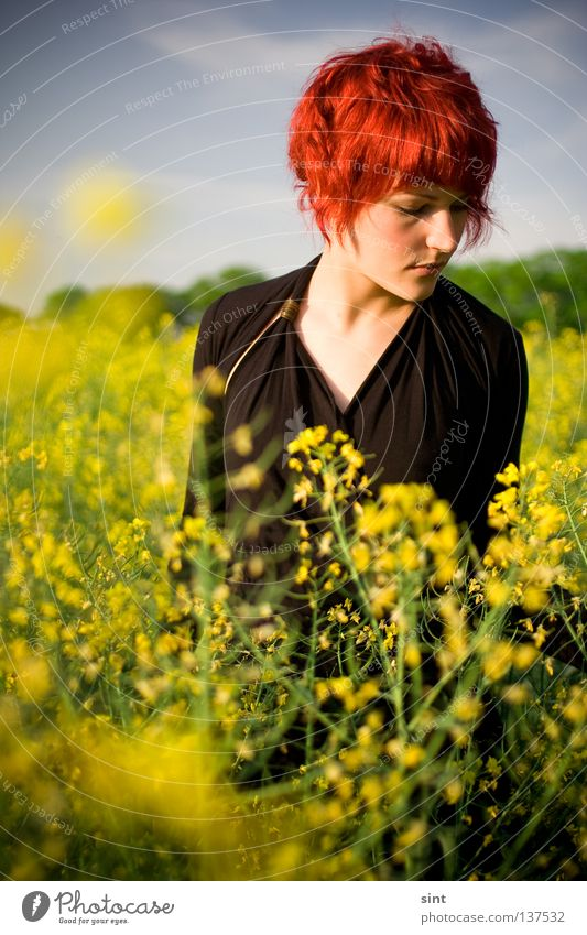 clouds of sunlight floating by Woman Human being Nature Youth (Young adults) Beautiful Sky Red Summer Joy Face Clouds Yellow Feminine Hair and hairstyles Mouth