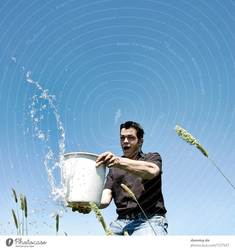 Fun in the Sun Man Fellow Stand Throw Damp Fluid Mineral water Frozen Bucket Shirt Pants Black Summer Physics Hot Grass Blade of grass Joy Cast Water Part