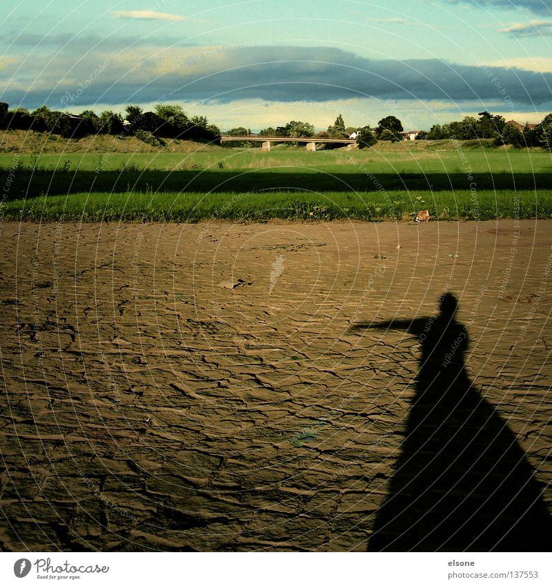 ::SLEEPWALKER:: Sleep Sleepwalk Woman Dress Meadow Evening sun Trust Concentrate elson Human being Shadow Nature Landscape Bridge Lanes & trails
