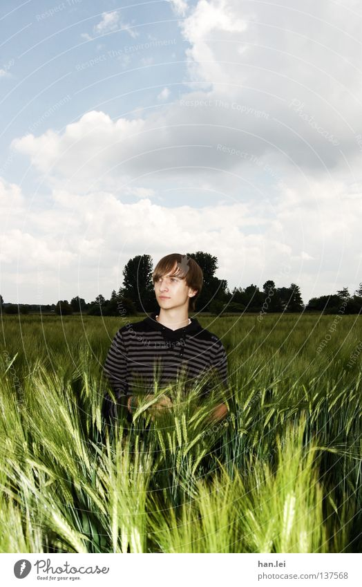 Man Youth (Young adults) Beautiful Clouds Adults Far-off places Spring Field Posture Grain Young man Blade of grass Breathe Location Ear of corn Photo shoot