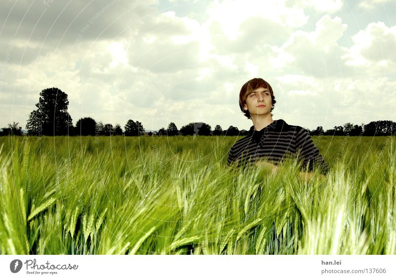 Posing Deluxe Grain Organic produce Beautiful Far-off places Young man Youth (Young adults) Man Adults Landscape Sky Clouds Spring Field Breathe Posture