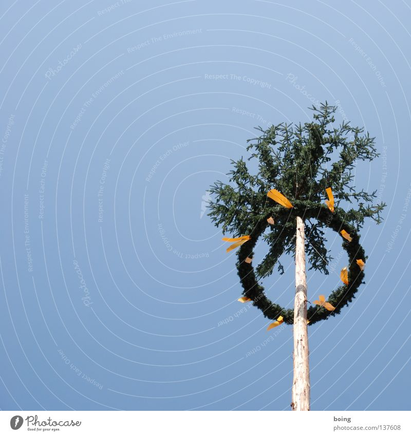 Spring Feasts & Celebrations Art Culture Transience Traffic infrastructure Bavaria Tradition Wreath May tree
