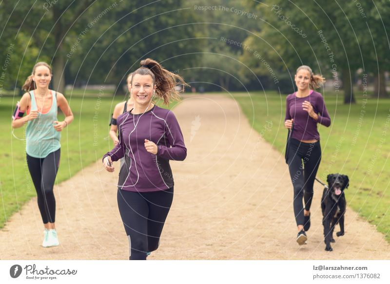 Four Athletic Girls Jog at the Park Woman Dog Summer Relaxation Adults Sports Lifestyle Group Together Friendship Action Copy Space Smiling Fitness