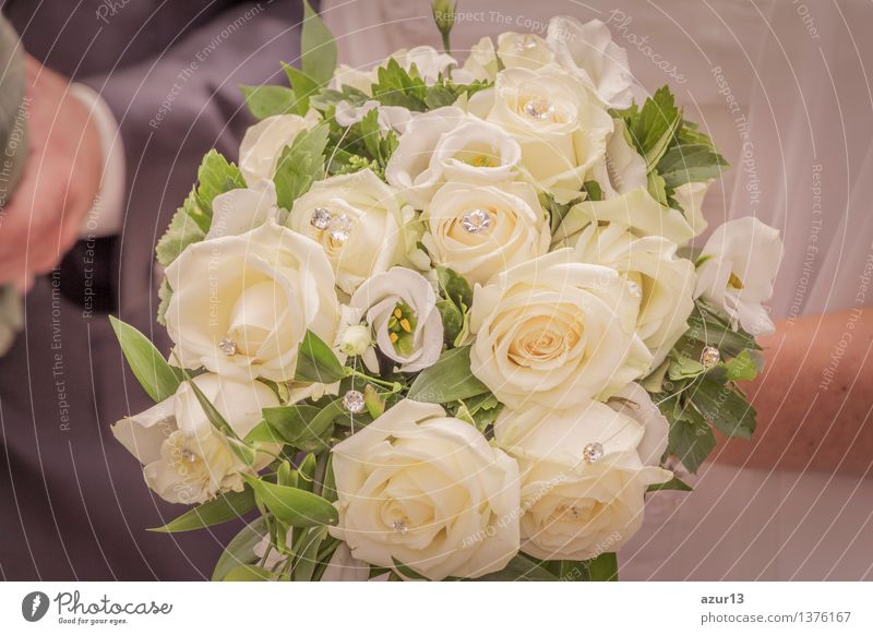 Bridal bouquet of the bride with flowers roses in white at wedding Decoration Feminine 1 Human being 2 Plant Summer Flower Rose Blossom Accessory Jewellery