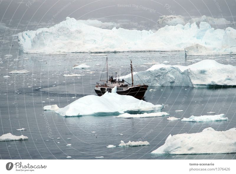 ice slalom Nature Water Summer Coast Fjord Ocean Navigation Fishing boat Slalom Movement Driving Gray Turquoise Adventure Experience Climate Vacation & Travel