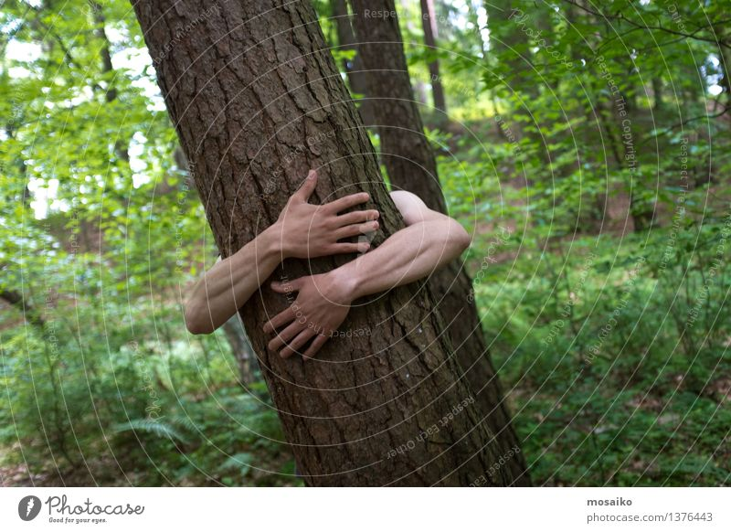 hug Man Adults Arm Nature Tree Forest Embrace Athletic Passion Environment Force of nature Life Joie de vivre (Vitality) Naked flesh Hand Love Summer