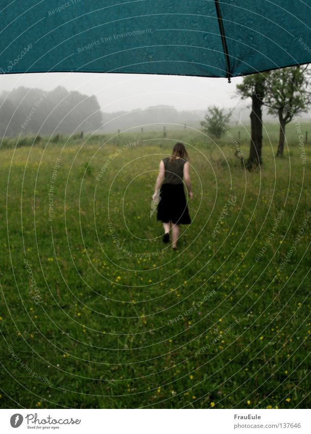 Woman Youth (Young adults) Tree Flower Summer Clouds Meadow Rain Fog Wind Weather Wet Perspective Umbrella Gale Turquoise