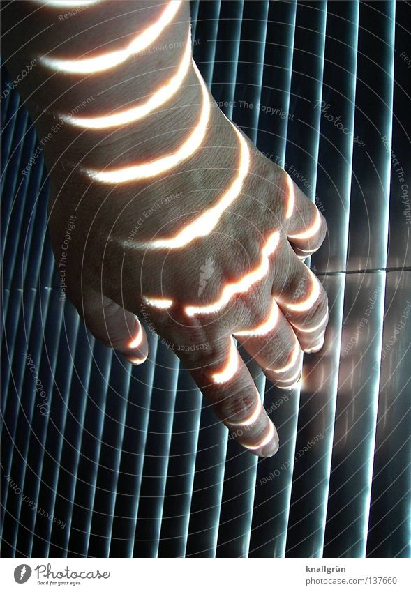 Woman Hand Dark Bright Lighting Fingers Stripe Touch Obscure Vertical Horizontal Venetian blinds Disk Shaft of light