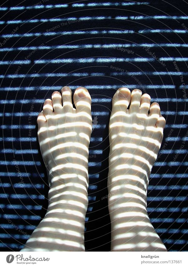 Woman Blue Dark Feet Legs Bright Lighting Stand Stripe Obscure Pallid Strange Appearance Toes Carpet Horizontal