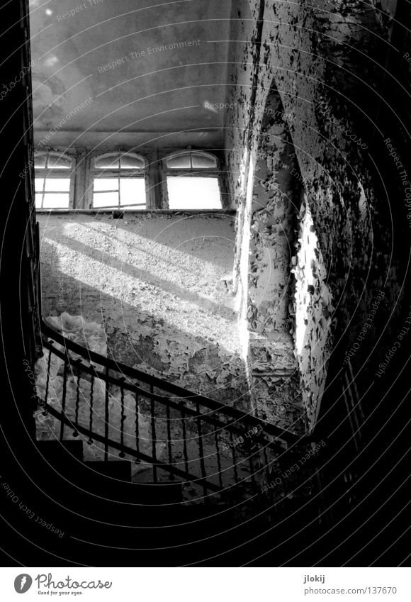 Up to the light Footwear High heels Black Concrete Derelict Plaster Crumbled House (Residential Structure) Hallway Staircase (Hallway) Building Going Decline
