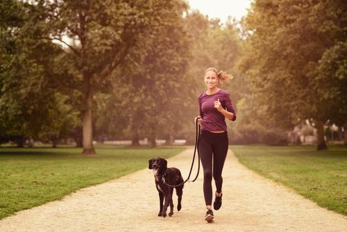 Healthy Woman Jogging in the Park with her Dog Lifestyle Relaxation Summer Sports Adults Friendship Animal Lanes & trails Pet Fitness Smiling Together Sunset