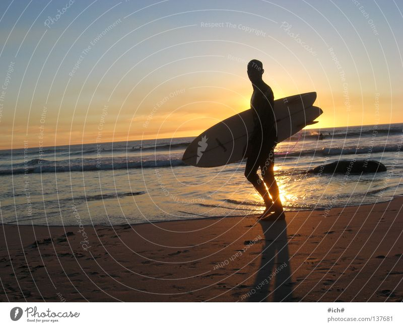Water Beautiful Sky Sun Ocean Beach Waves Coast Surfing Surfer Surfboard South Africa Shadow play Netherlands Cape Town Watering Hole