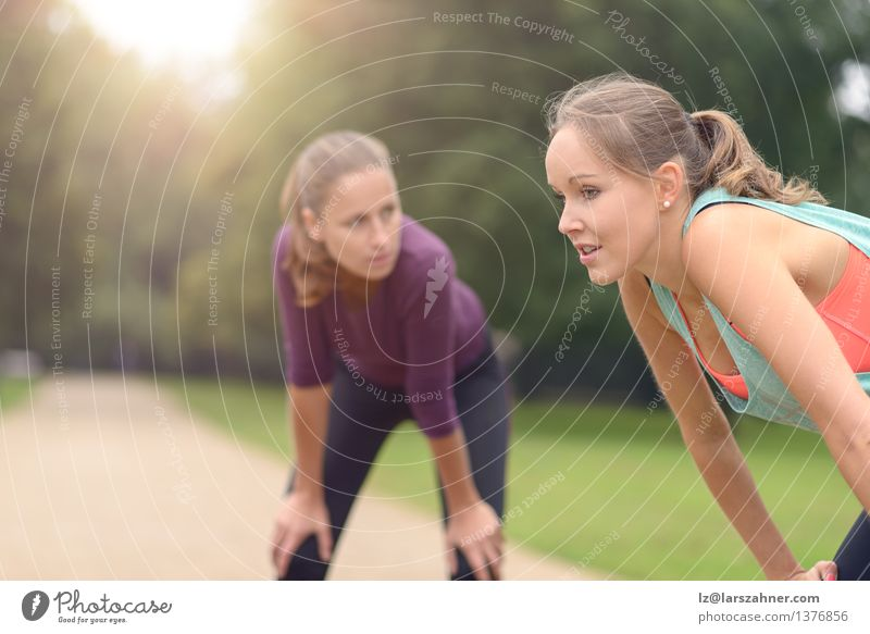 Women Resting After their Outdoor Exercise Woman Girl Face Adults Lanes & trails Sports Lifestyle Friendship Park Action Copy Space Blonde Smiling Fitness Flare
