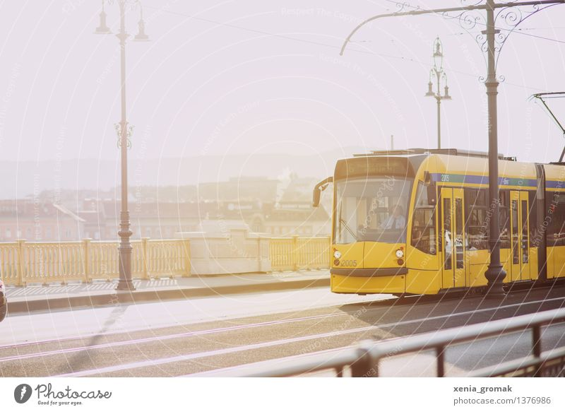 tram Lifestyle Leisure and hobbies Vacation & Travel Tourism Trip Adventure City trip Summer Town Capital city Bridge Transport Means of transport