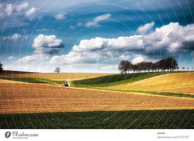 Tractor driving on colourful fields with cloudy skies Field Agriculture Arable land Tree Row of trees Clouds Relaxation trekker Green Horizon Hill