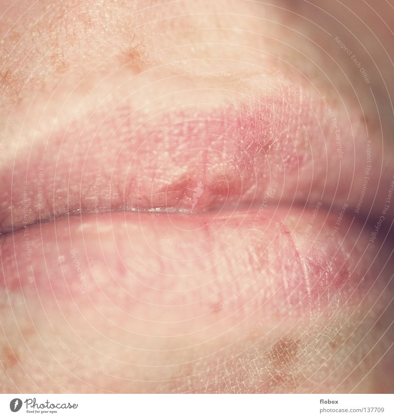 Woman Natural Mouth Skin Lips Delicate Section of image Partially visible Mole Parts of body Organ Herpes Detail of face Upper lip Woman`s mouth Lower lip