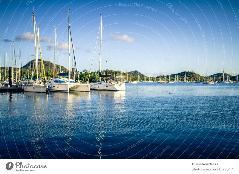 in the safe harbor! Vacation & Travel Tourism Far-off places Summer Summer vacation Sun Aquatics Sailing Environment Landscape Water Sky Hill Coast Bay Fjord