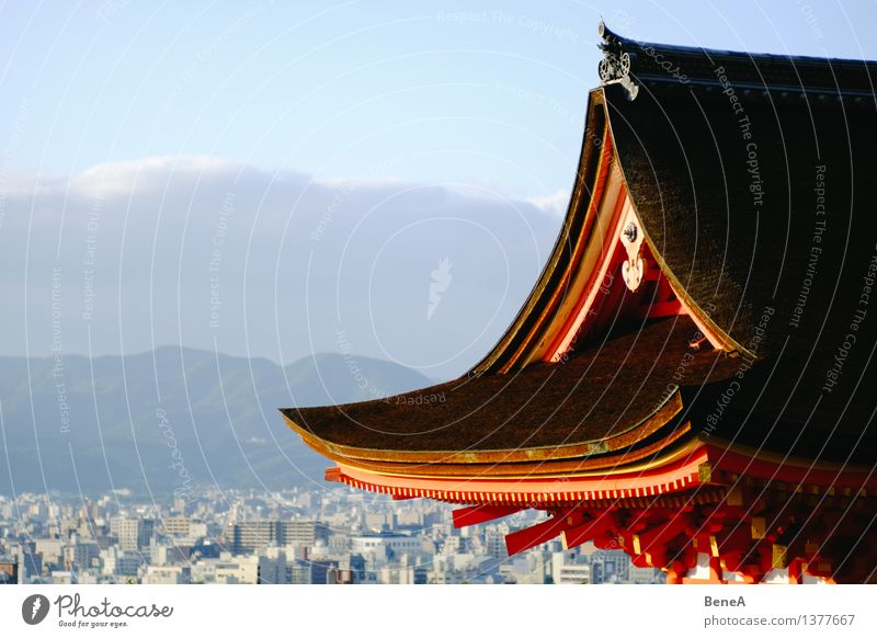 temple Harmonious Vacation & Travel Kyoto Japan Asia Town Downtown Old town Skyline House (Residential Structure) Hut Church Dome Manmade structures Building