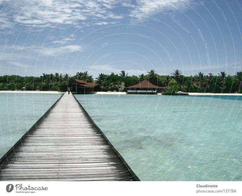 Sky Ocean Beach Far-off places Bridge Connection Palm tree Maldives