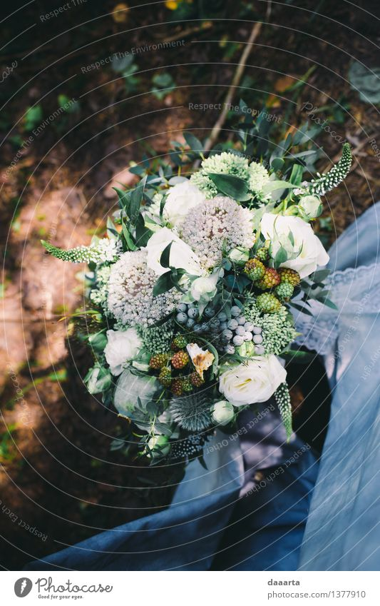 wedding bouquette Nature Plant Beautiful Flower Landscape Joy Forest Environment Life Grass Style Feasts & Celebrations Lifestyle Moody Party Sand