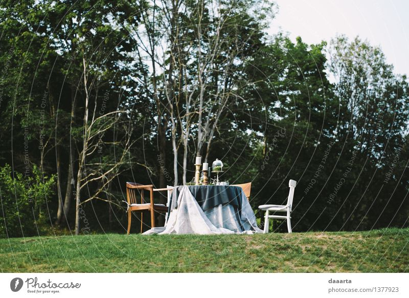 table setting 8 Nature Tree Joy Forest Life Interior design Grass Feminine Style Lifestyle Feasts & Celebrations Freedom Moody Party Wild Field