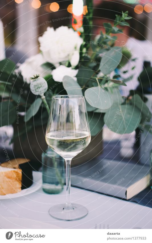 moment of vine Plant Flower Joy Warmth Life Interior design Style Lifestyle Feasts & Celebrations Freedom Moody Decoration Elegant Glass Authentic Happiness