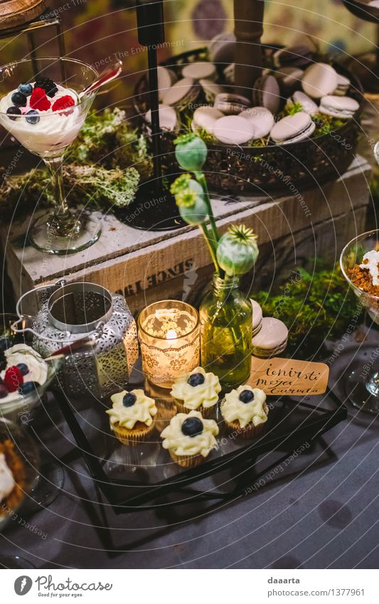 dessert in forest Plant Joy Life Interior design Style Feasts & Celebrations Lifestyle Freedom Food Lamp Moody Party Leisure and hobbies Decoration Elegant