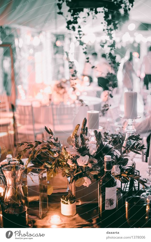 night out Plant Flower Leaf Joy Life Interior design Grass Style Feasts & Celebrations Lifestyle Freedom Lamp Moody Party Design Leisure and hobbies