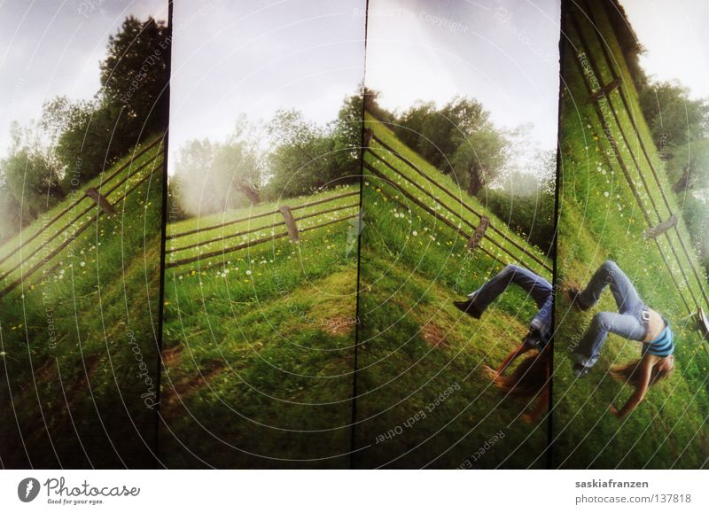 L O M O Lomography 4 Division Rotate Rotation Movement Meadow Tree Fence Grass Clouds Green Summer Flexible Bend Gymnastics four-part Change Perspective Sky