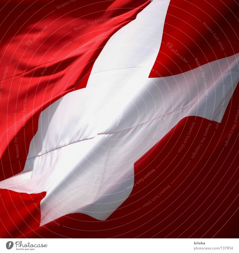 EM winner 08! Flag Switzerland Swiss flag Swiss Alps Symbols and metaphors Europe Master Success Red White Crucifix Gale Wind Judder Confederate Ball sports