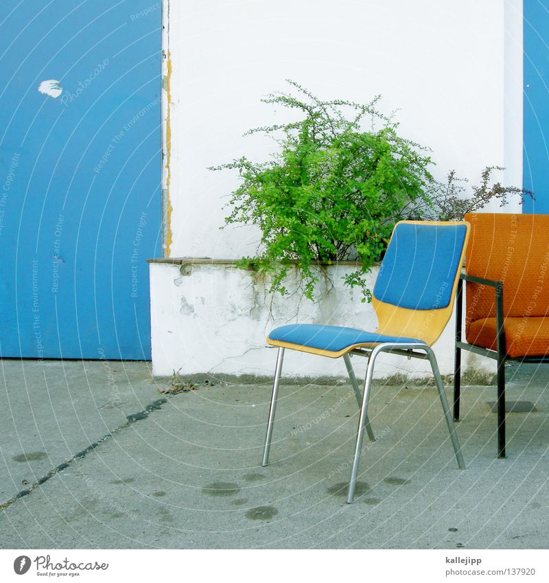 White Green Blue House (Residential Structure) Relaxation Orange Door Design Fresh Break Bushes Gate Turquoise Workshop Parking lot Seating